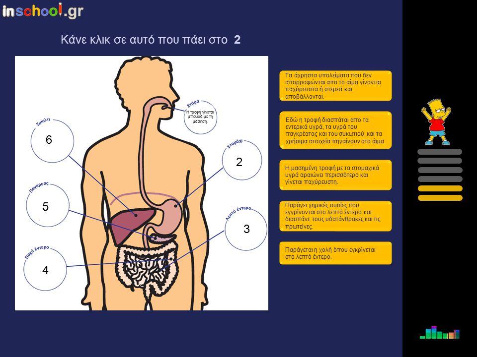1 2 3 4 5 6 Η μασημένη τροφή με τα στομαχικά υγρά αραιώνει περισσότερο και γίνεται παχύρευστη. Η τροφή γίνεται μπουκιά με τη μάσηση. Τα άχρηστα υπολεί