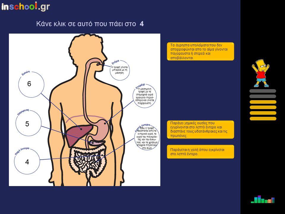 3 4 5 6 Τα άχρηστα υπολείματα που δεν απορροφώνται απο το αίμα γίνονται παχύρευστα ή στερεά και αποβάλλονται. Παράγει χημικές ουσίες που εγγρίνονται σ