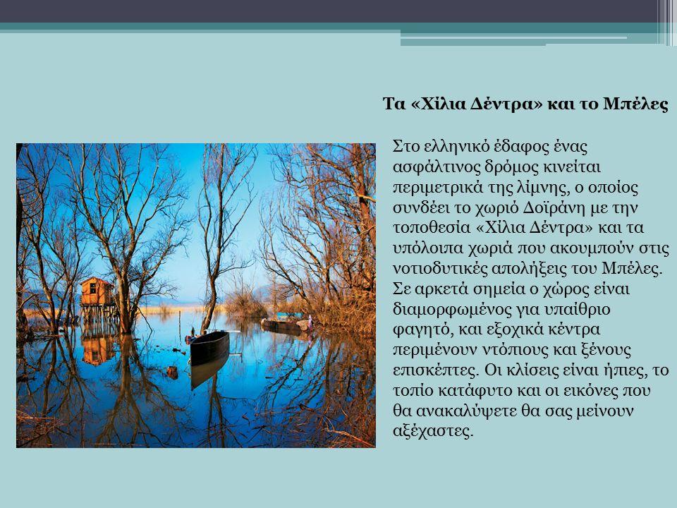 Στο ελληνικό έδαφος ένας ασφάλτινος δρόμος κινείται περιμετρικά της λίμνης, ο οποίος συνδέει το χωριό Δοϊράνη με την τοποθεσία «Χίλια Δέντρα» και τα υπόλοιπα χωριά που ακουμπούν στις νοτιοδυτικές απολήξεις του Μπέλες.