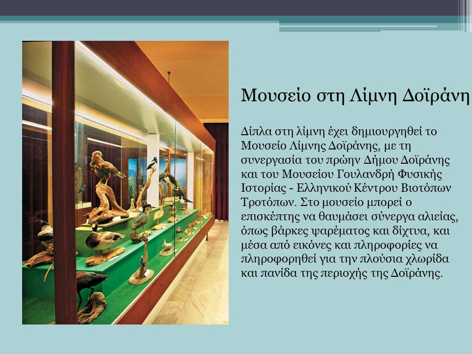 Δίπλα στη λίμνη έχει δημιουργηθεί το Μουσείο Λίμνης Δοϊράνης, με τη συνεργασία του πρώην Δήμου Δοϊράνης και του Μουσείου Γουλανδρή Φυσικής Ιστορίας - Ελληνικού Κέντρου Βιοτόπων Τροτόπων.