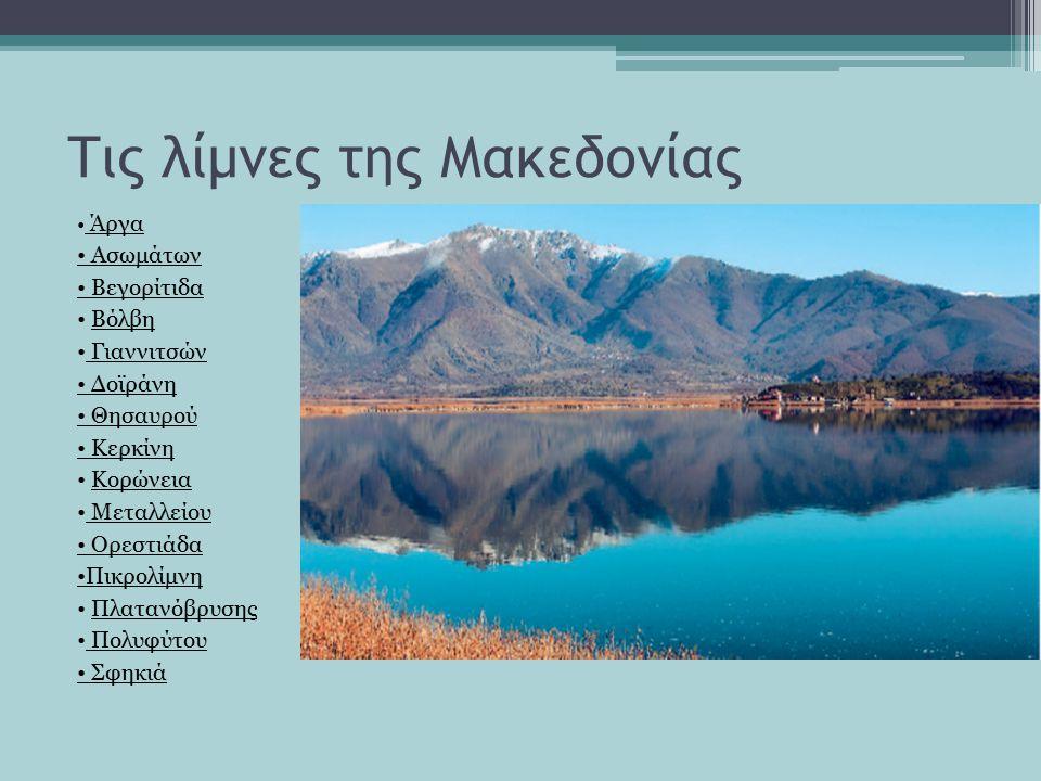 Τις λίμνες της Μακεδονίας Άργα Ασωμάτων Βεγορίτιδα Βόλβη Γιαννιτσών Δοϊράνη Θησαυρού Κερκίνη Κορώνεια Μεταλλείου Ορεστιάδα Πικρολίμνη Πλατανόβρυσης Πολυφύτου Σφηκιά