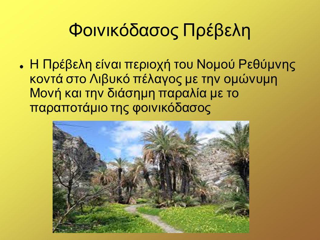 Σπιναλόγκα Η Σπιναλόγκα είναι ένα μικρό νησί το οποίο κλείνει από τα βόρεια τον κόλπο της Ελούντας στην Επαρχία Μεραμπέλλου. Το αρχαίο του όνομα ήταν