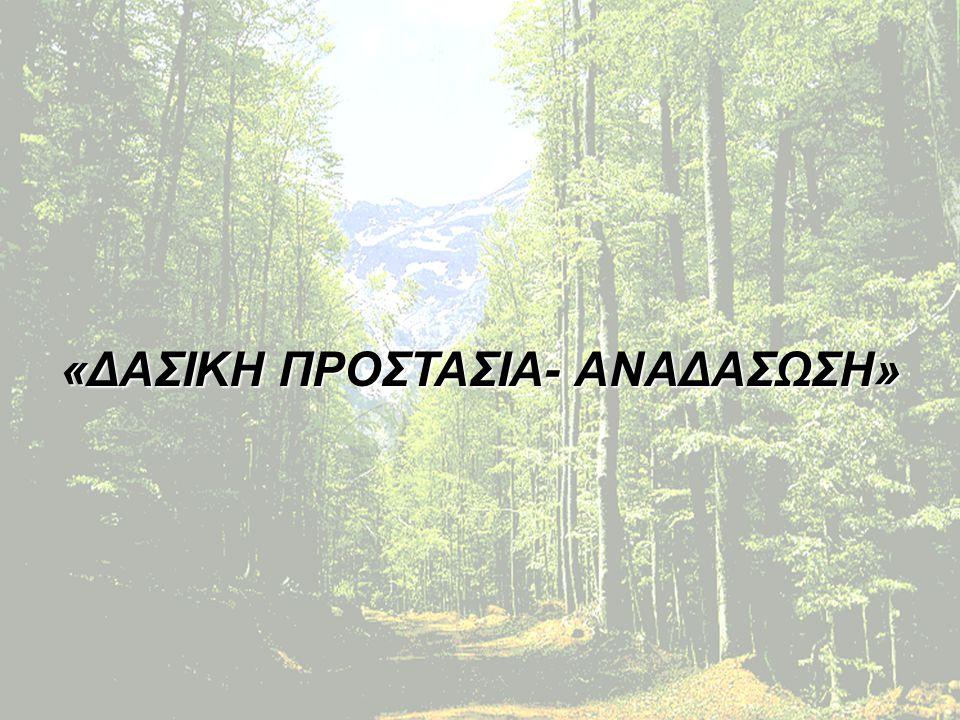 Η αξία του δάσους Απορροφά και εξουδετερώνει διάφορες επιβλαβείς ουσίες