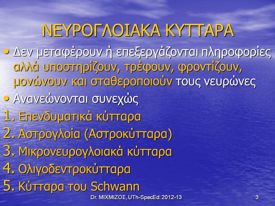 Ολιγοδενδροκύτταρα Dr. ΜΙΧΜΙΖΟΣ, UTh-SpecEd: 2012-13 14