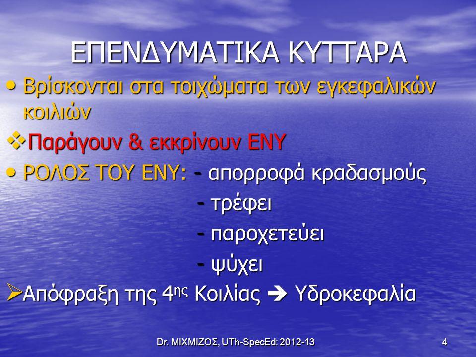 Ολιγοδενδροκύτταρα & Μυελίνη Dr. ΜΙΧΜΙΖΟΣ, UTh-SpecEd: 2012-13 15