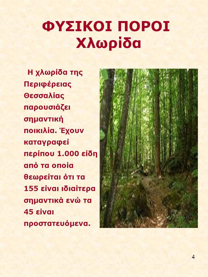 4 ΦΥΣΙΚΟΙ ΠΟΡΟΙ Χλωρίδα Η χλωρίδα της Περιφέρειας Θεσσαλίας παρουσιάζει σηµαντική ποικιλία.