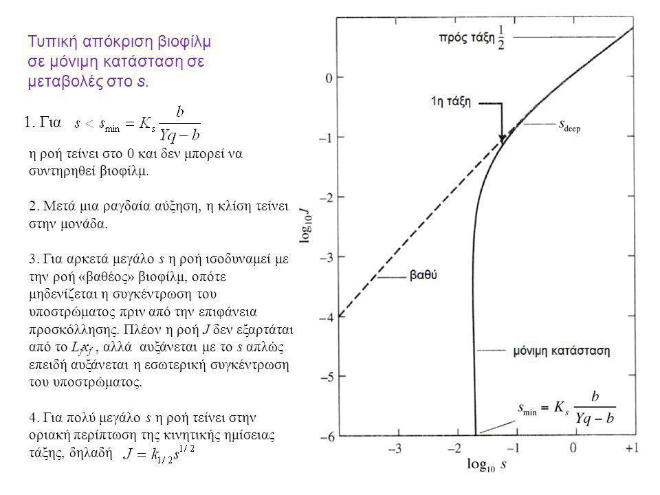 Τυπική απόκριση βιοφίλμ σε μόνιμη κατάσταση σε μεταβολές στο s.