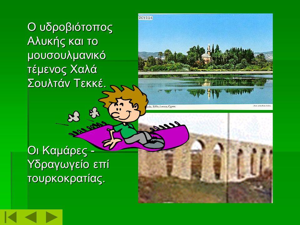 Η πλατεία Ευρώπης – το παλαιοντολογικό μουσείο. Το μεσαιωνικό Κάστρο – μουσείο. www.larnaca.com www.Kypros.org/cyprus/larnaca.html