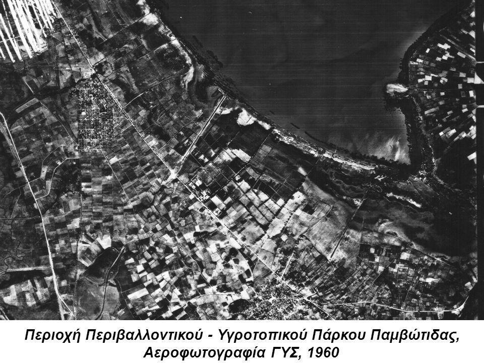 Περιοχή Περιβαλλοντικού - Υγροτοπικού Πάρκου Παμβώτιδας, Αεροφωτογραφία ΓΥΣ, 1960