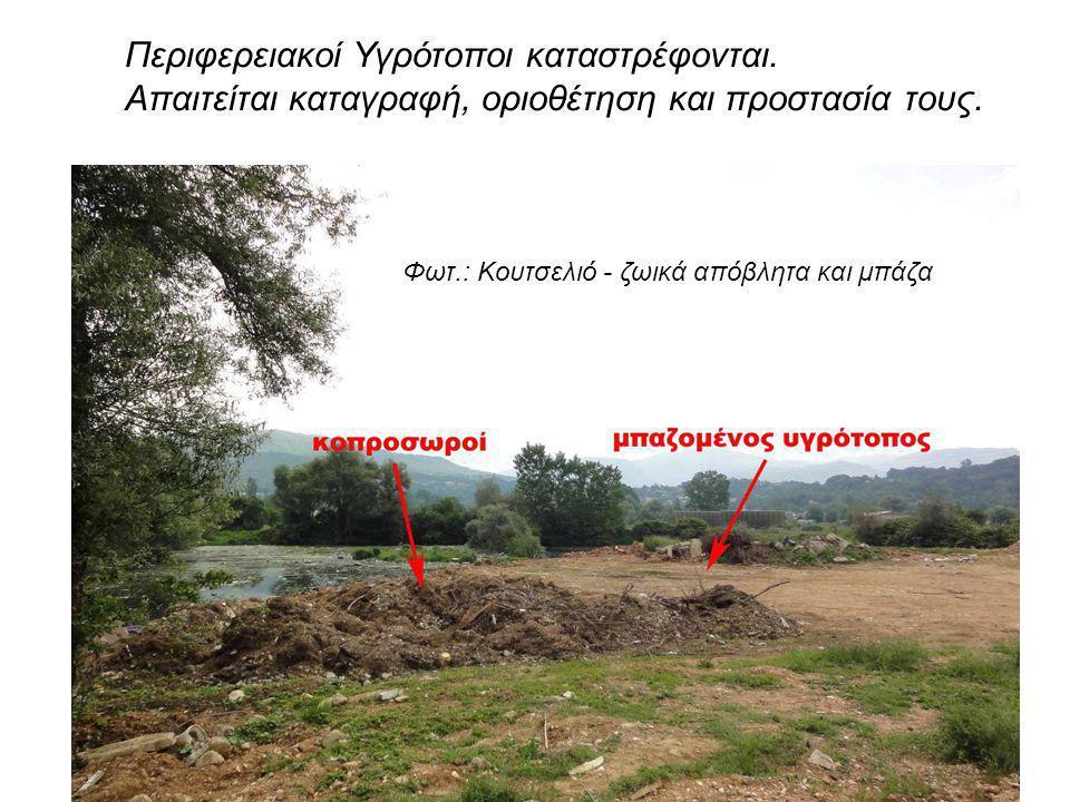 Περιφερειακοί Υγρότοποι καταστρέφονται. Απαιτείται καταγραφή, οριοθέτηση και προστασία τους. Φωτ.: Κουτσελιό - ζωικά απόβλητα και μπάζα