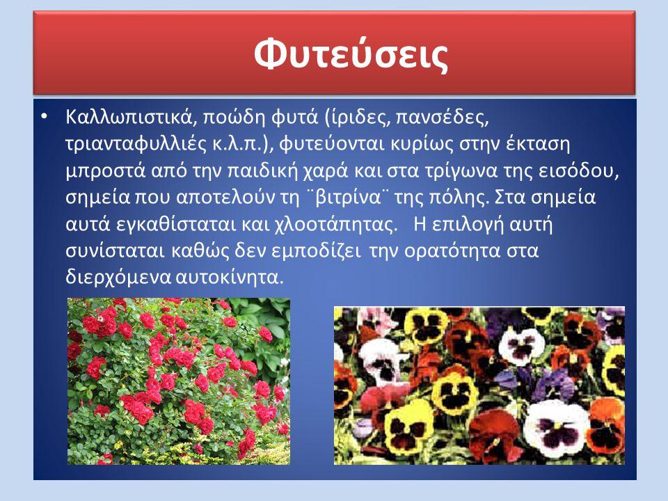 • Καλλωπιστικά, ποώδη φυτά (ίριδες, πανσέδες, τριανταφυλλιές κ.λ.π.), φυτεύονται κυρίως στην έκταση μπροστά από την παιδική χαρά και στα τρίγωνα της ε