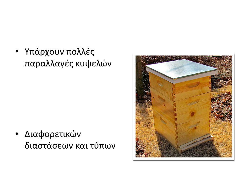 Το υπόβαθρο της κυψέλης • Η κυψέλη δεν πρέπει να αφήνεται στο έδαφος • Το υπόβαθρο προστατεύει το δάπεδο της κυψέλης απο το σάπισμα • Ελαττώνει την υγρασία στο χώρο του μελισσιού • Διευκολύνει τον μελισσοκόμο γιατι δεν αναγκάζεται να σκύβει