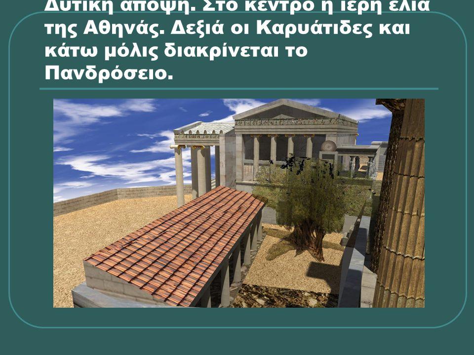 Δυτική άποψη. Στο κέντρο η ιερή ελιά της Αθηνάς. Δεξιά οι Καρυάτιδες και κάτω μόλις διακρίνεται το Πανδρόσειο.