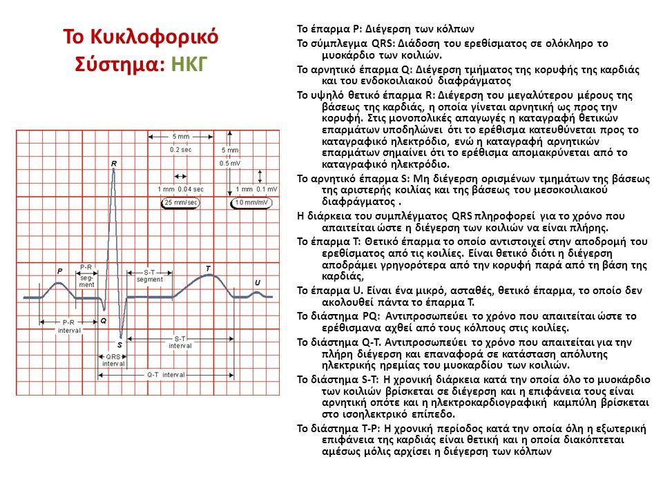 To έπαρμα Ρ: Διέγερση των κόλπων Το σύμπλεγμα QRS: Διάδοση του ερεθίσματος σε ολόκληρο το μυοκάρδιο των κοιλιών. To αρνητικό έπαρμα Q: Διέγερση τμήματ