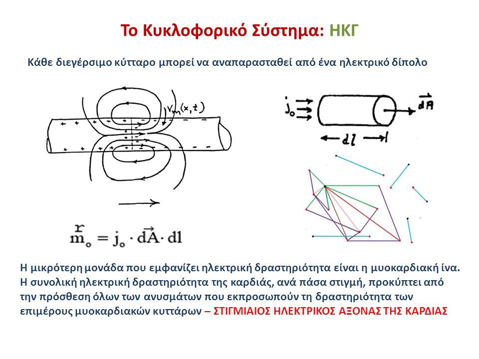 Το Κυκλοφορικό Σύστημα: ΗΚΓ Η μικρότερη μονάδα που εμφανίζει ηλεκτρική δραστηριότητα είναι η μυοκαρδιακή ίνα. Η συνολική ηλεκτρική δραστηριότητα της κ
