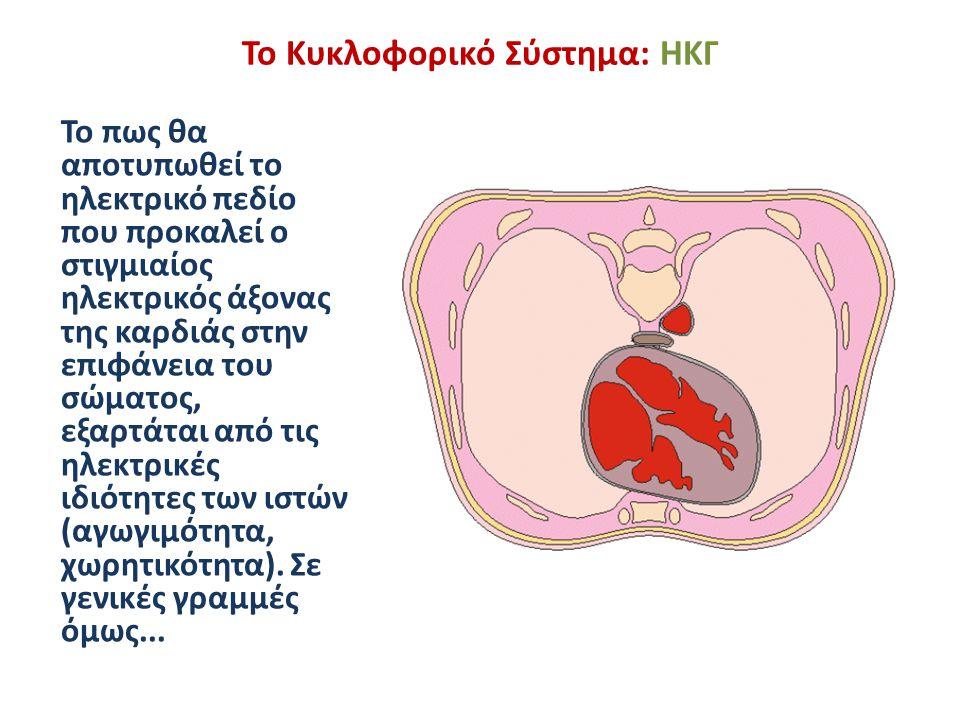 Το Κυκλοφορικό Σύστημα: ΗΚΓ Σε κάθε σημείο που βρίσκεται μέσα στη σφαίρα, το ηλεκτρικό δυναμικό που οφείλεται στο στιγμιαίο ηλεκτρικό άξονα της καρδιάς είναι: Σε κάθε σημείο που βρίσκεται στην επιφάνεια της σφαίρας, το ηλεκτρικό δυναμικό που οφείλεται στο στιγμιαίο ηλεκτρικό άξονα της καρδιάς είναι: ή