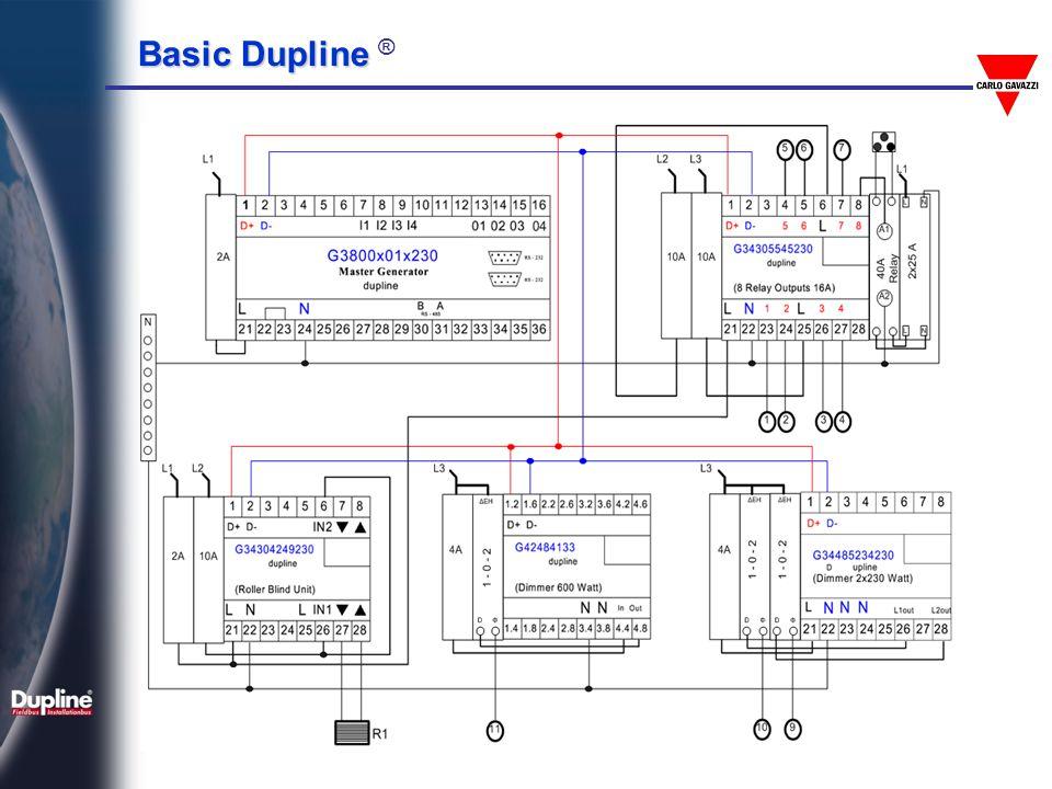Basic Dupline Basic Dupline ®