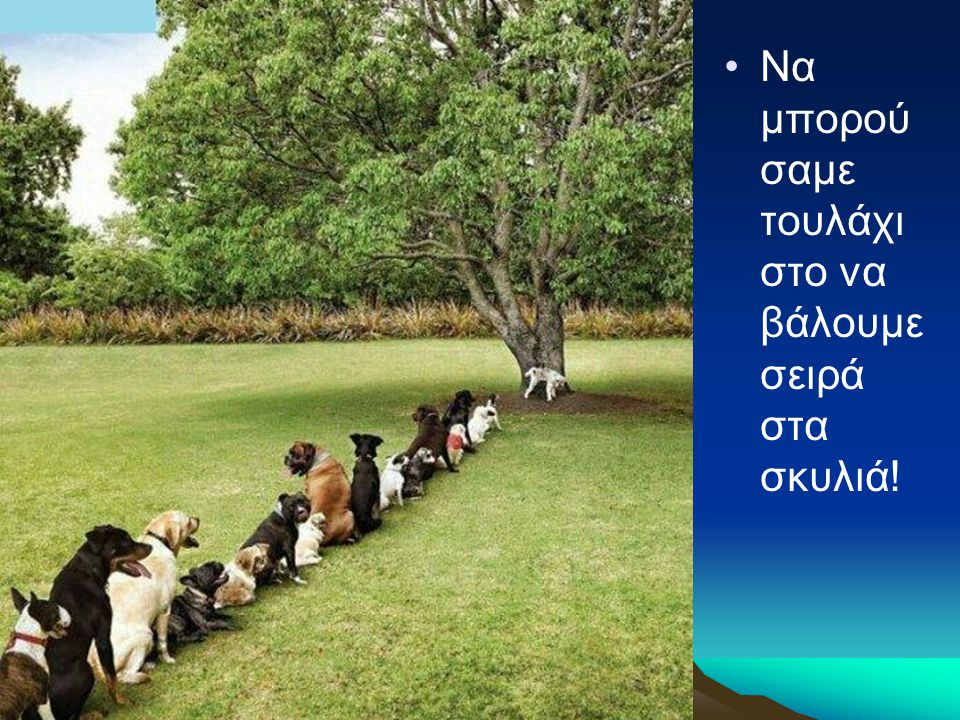 •Να μπορού σαμε τουλάχι στο να βάλουμε σειρά στα σκυλιά!