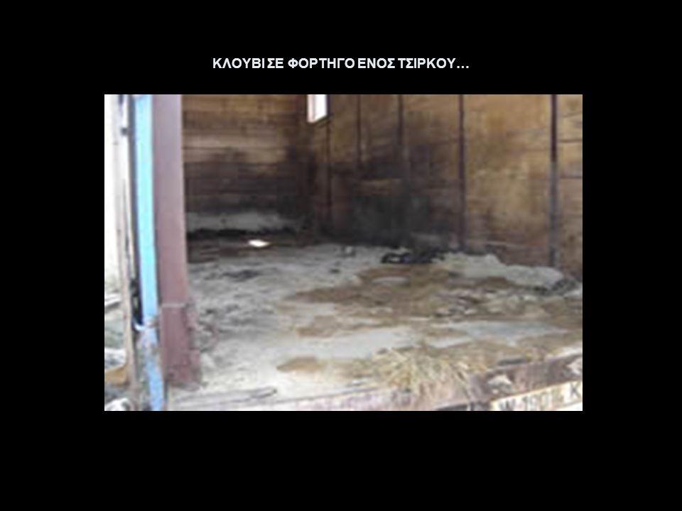ΚΛΟΥΒΙ ΣΕ ΦΟΡΤΗΓΟ ΕΝΟΣ ΤΣΙΡΚΟΥ…