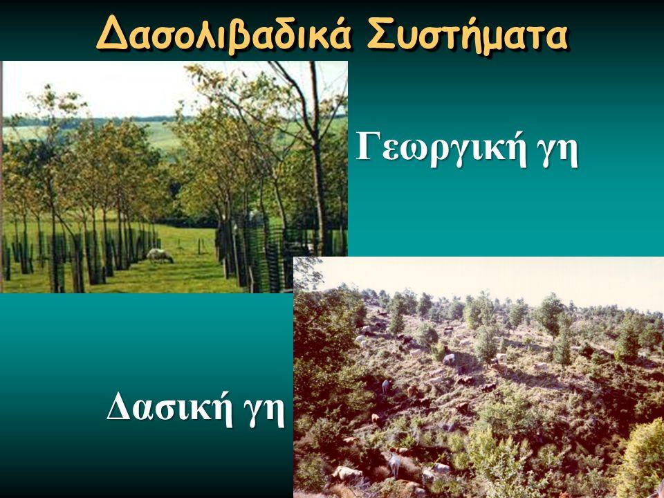 Δασολιβαδικά Συστήματα Δασική γη Γεωργική γη