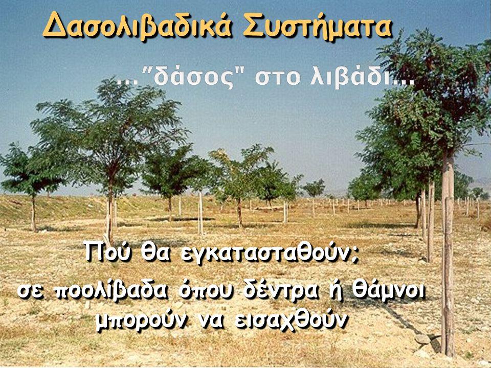 Δασολιβαδικά Συστήματα Πού θα εγκατασταθούν; σε ποολίβαδα όπου δέντρα ή θάμνοι μπορούν να εισαχθούν Πού θα εγκατασταθούν; σε ποολίβαδα όπου δέντρα ή θ