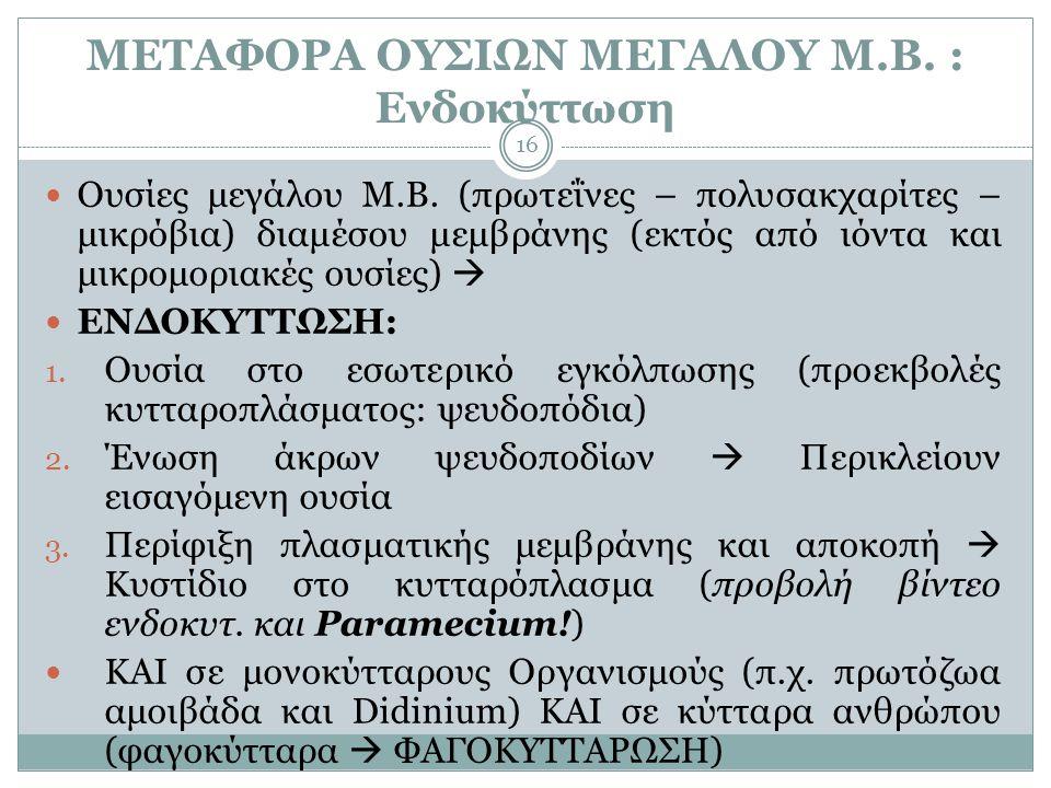 ΜΕΤΑΦΟΡΑ ΟΥΣΙΩΝ ΜΕΓΑΛΟΥ Μ.Β. : Ενδοκύττωση 16  Ουσίες μεγάλου Μ.Β. (πρωτεΐνες – πολυσακχαρίτες – μικρόβια) διαμέσου μεμβράνης (εκτός από ιόντα και μι