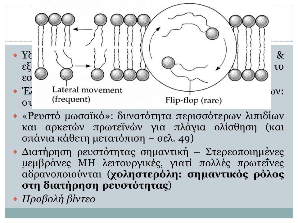 Δομή πλασματικής μεμβράνης (2) 8  Υδρόφιλα τμήματα λιπιδίων προς ενδοκυτταρικό & εξωκυτταρικό περιβάλλον – Υδρόφοβα τμήματα προς το εσωτερικό της κατασκευής  Έλξεις μεταξύ υδρόφιλων και υδρόφοβων τμημάτων: σταθερότητα στη μεμβράνη, χωρίς στατικότητα  «Ρευστό μωσαϊκό»: δυνατότητα περισσότερων λιπιδίων και αρκετών πρωτεϊνών για πλάγια ολίσθηση (και σπάνια κάθετη μετατόπιση – σελ.