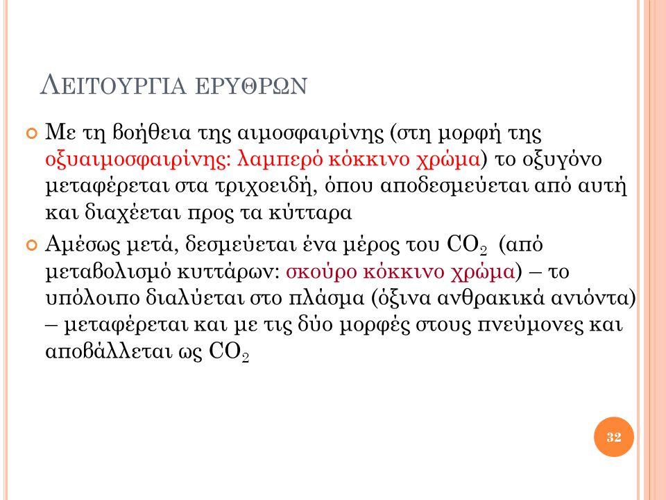 Λ ΕΙΤΟΥΡΓΙΑ ΕΡΥΘΡΩΝ Με τη βοήθεια της αιμοσφαιρίνης (στη μορφή της οξυαιμοσφαιρίνης: λαμπερό κόκκινο χρώμα) το οξυγόνο μεταφέρεται στα τριχοειδή, όπου
