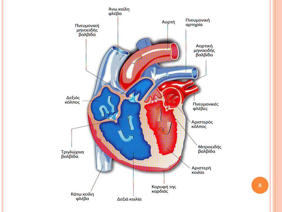 Α ΡΤΗΡΙΑΚΗ ΠΙΕΣΗ Πίεση αίματος: Πίεση που ασκείται από το αίμα στο τοίχωμα ενός αιμοφόρου αγγείου.