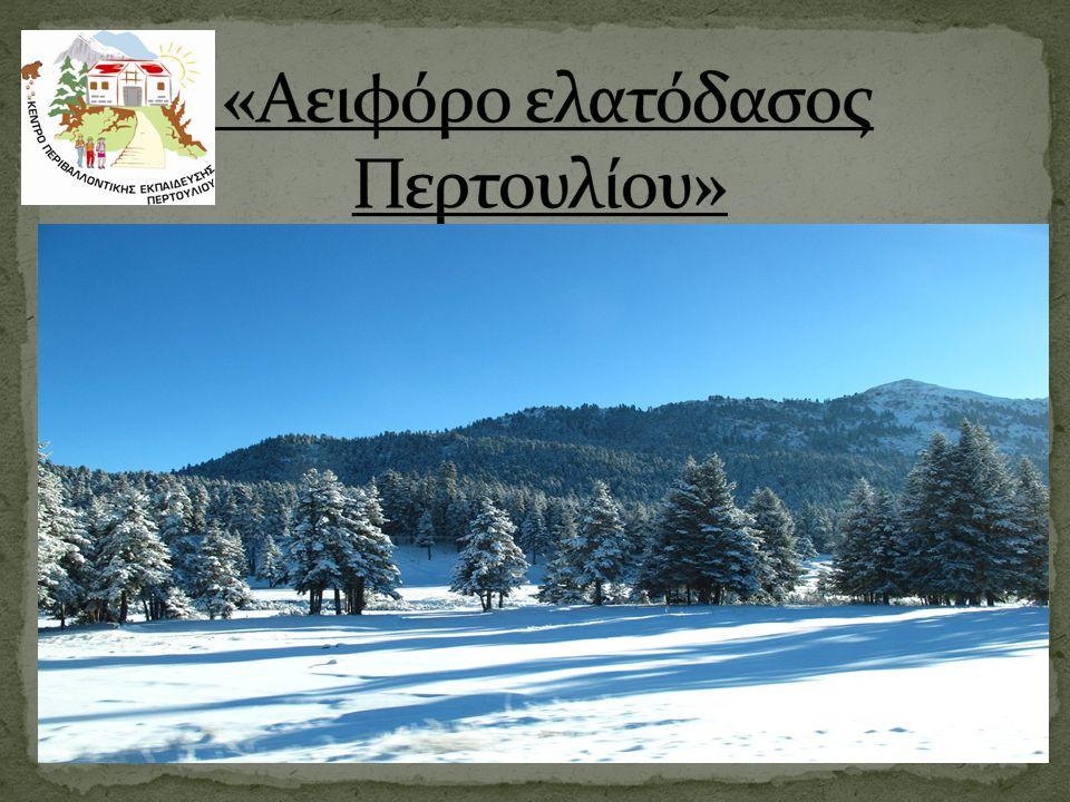  Το ελατόδασος Περτουλίου επιλέχθηκε ως θέμα Προγράμματος Περιβαλλοντικής Εκπαίδευσης επειδή:  Υπόκειται σε αειφορική διαχείριση από το Τμήμα Δασολογίας και Φυσικού Περιβάλλοντος του Αριστοτέλειου Πανεπιστήμιου Θεσσαλονίκης, με αποτέλεσμα να αποτελεί πρότυπο διαχείρισης δασικού οικοσυστήματος.