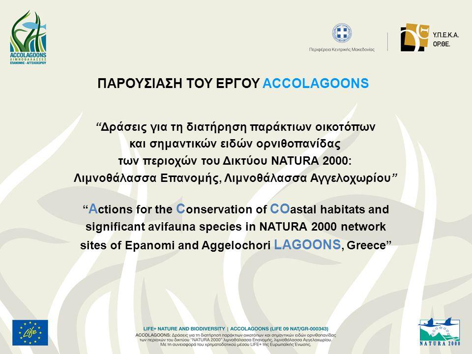 ACCOLAGOONS σημαίνει Συμβολή στην αειφορική διαχείριση και προστασία δύο πολύτιμων και σημαντικών οικολογικά περιοχών, των Λιμνοθαλασσών Επανομής και Αγγελοχωρίου.