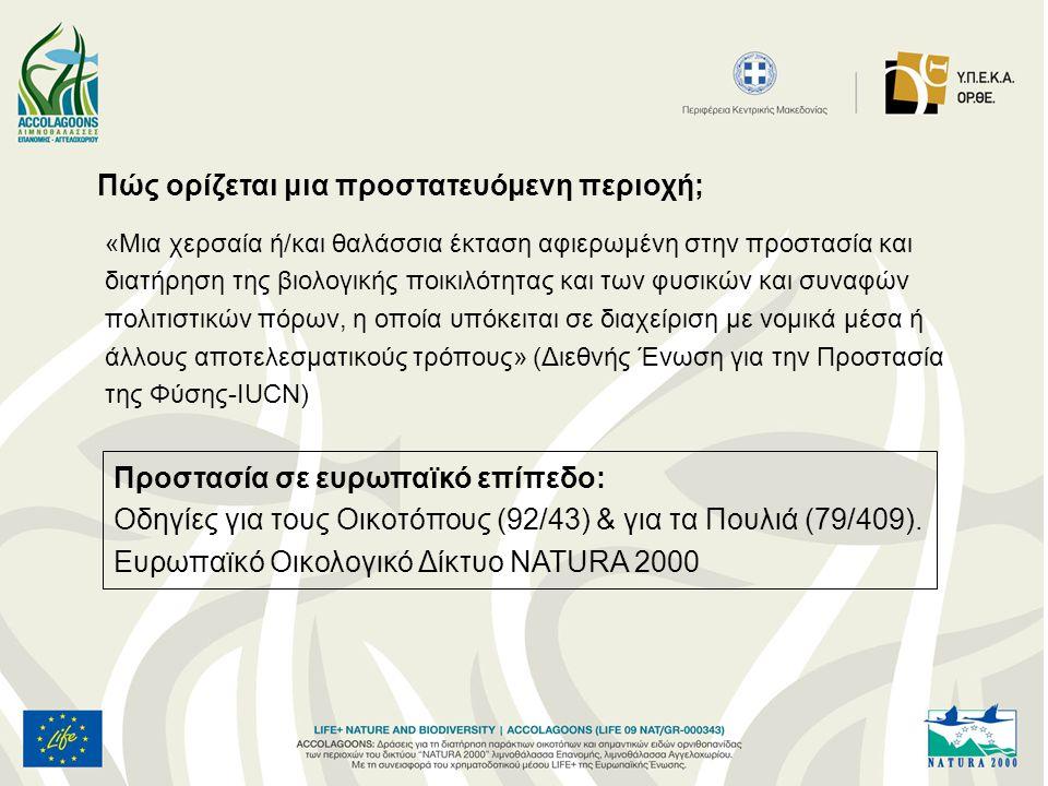 Αποτελούν τμήμα του Δικτύου Natura 2000 και έχουν χαρακτη- ριστεί «Ζώνες Ειδικής Προστασίας για την Ορνιθοπανίδα» (Οδηγία 2009/147/ΕΚ), Έχουν χαρακτηριστεί ως «Ειδικές Ζώνες Διατήρησης», σύμφωνα με την οδηγία 92/43/ΕΟΚ και το Ν.
