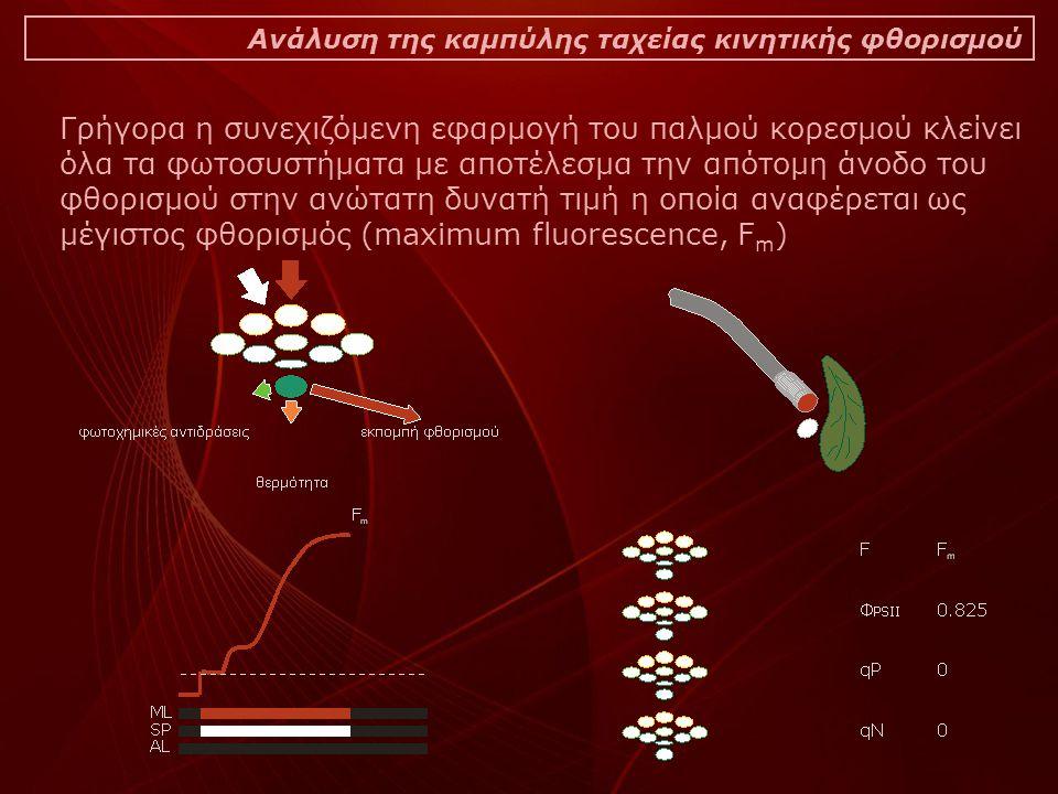 Ανάλυση της καμπύλης ταχείας κινητικής φθορισμού Γρήγορα η συνεχιζόμενη εφαρμογή του παλμού κορεσμού κλείνει όλα τα φωτοσυστήματα με αποτέλεσμα την απότομη άνοδο του φθορισμού στην ανώτατη δυνατή τιμή η οποία αναφέρεται ως μέγιστος φθορισμός (maximum fluorescence, F m )