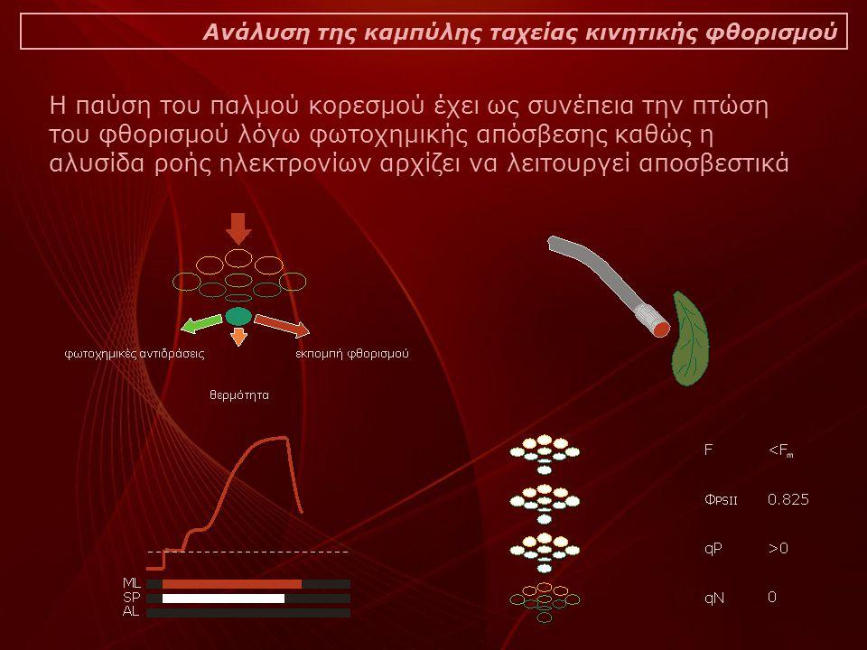 Ανάλυση της καμπύλης ταχείας κινητικής φθορισμού Η παύση του παλμού κορεσμού έχει ως συνέπεια την πτώση του φθορισμού λόγω φωτοχημικής απόσβεσης καθώς η αλυσίδα ροής ηλεκτρονίων αρχίζει να λειτουργεί αποσβεστικά
