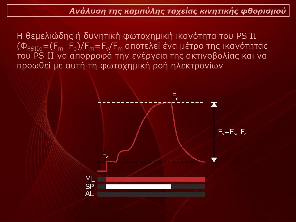 Ανάλυση της καμπύλης ταχείας κινητικής φθορισμού Η θεμελιώδης ή δυνητική φωτοχημική ικανότητα του PS II (Φ PSIIo =(F m –F o )/F m =F v /F m αποτελεί ένα μέτρο της ικανότητας του PS II να απορροφά την ενέργεια της ακτινοβολίας και να προωθεί με αυτή τη φωτοχημική ροή ηλεκτρονίων