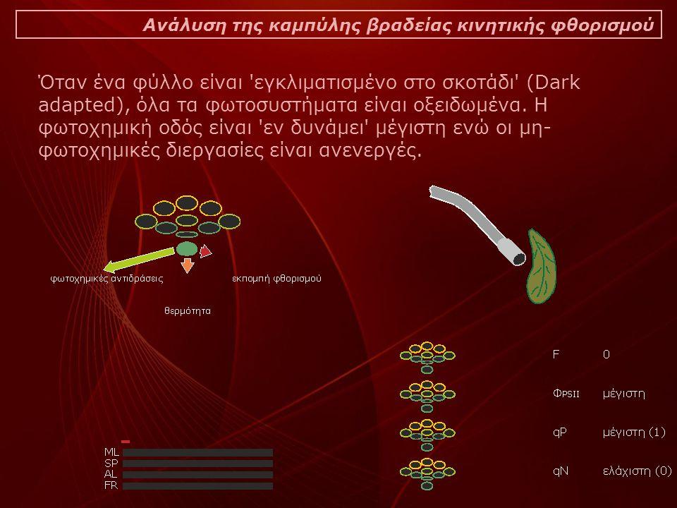 Ανάλυση της καμπύλης βραδείας κινητικής φθορισμού Όταν ένα φύλλο είναι εγκλιματισμένο στο σκοτάδι (Dark adapted), όλα τα φωτοσυστήματα είναι οξειδωμένα.