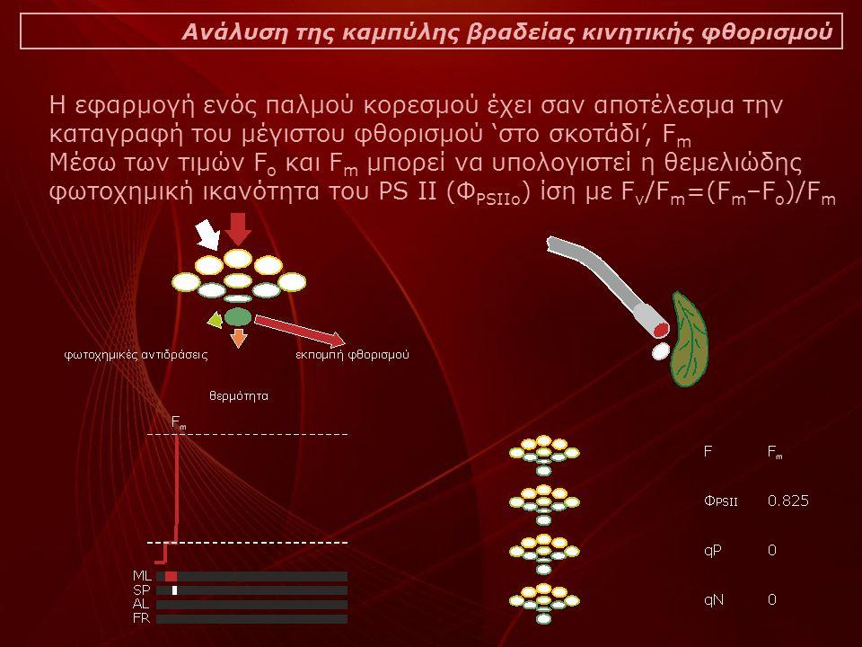 Ανάλυση της καμπύλης βραδείας κινητικής φθορισμού Η εφαρμογή ενός παλμού κορεσμού έχει σαν αποτέλεσμα την καταγραφή του μέγιστου φθορισμού 'στο σκοτάδι', F m Μέσω των τιμών F o και F m μπορεί να υπολογιστεί η θεμελιώδης φωτοχημική ικανότητα του PS II (Φ PSIIo ) ίση με F v /F m =(F m –F o )/F m