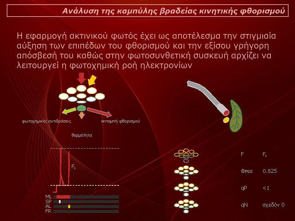 Η εφαρμογή ακτινικού φωτός έχει ως αποτέλεσμα την στιγμιαία αύξηση των επιπέδων του φθορισμού και την εξίσου γρήγορη απόσβεσή του καθώς στην φωτοσυνθετική συσκευή αρχίζει να λειτουργεί η φωτοχημική ροή ηλεκτρονίων