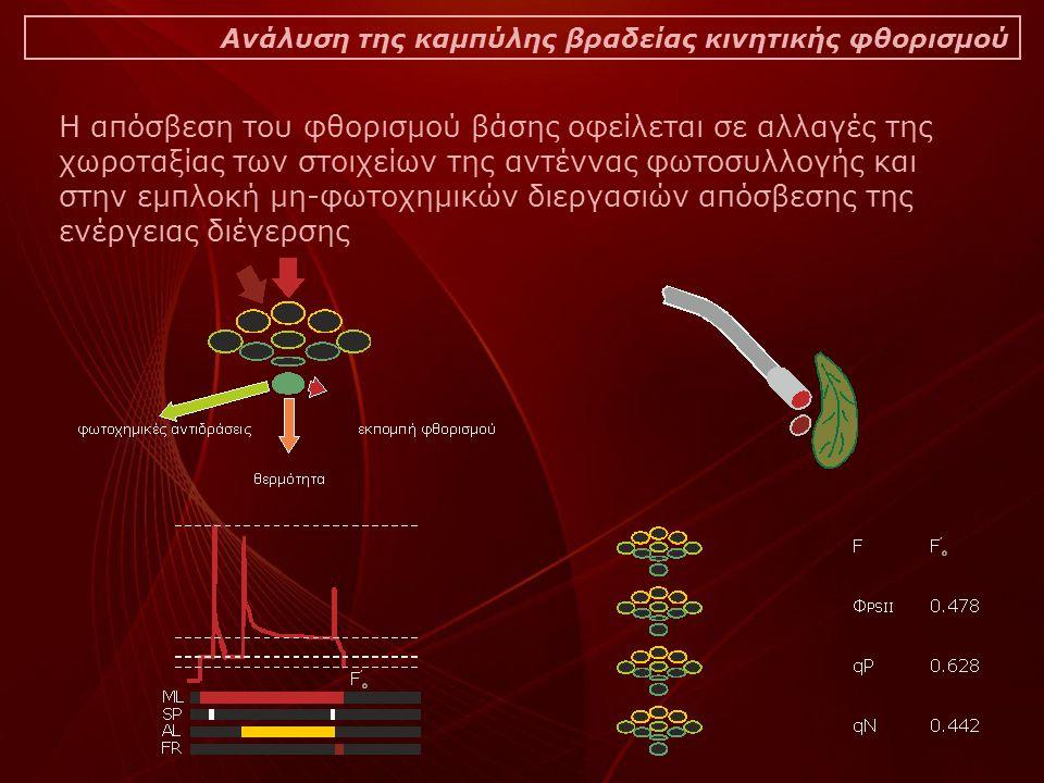 Ανάλυση της καμπύλης βραδείας κινητικής φθορισμού Η απόσβεση του φθορισμού βάσης οφείλεται σε αλλαγές της χωροταξίας των στοιχείων της αντέννας φωτοσυ