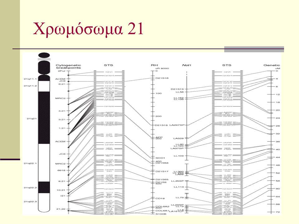 Χρωμόσωμα 21
