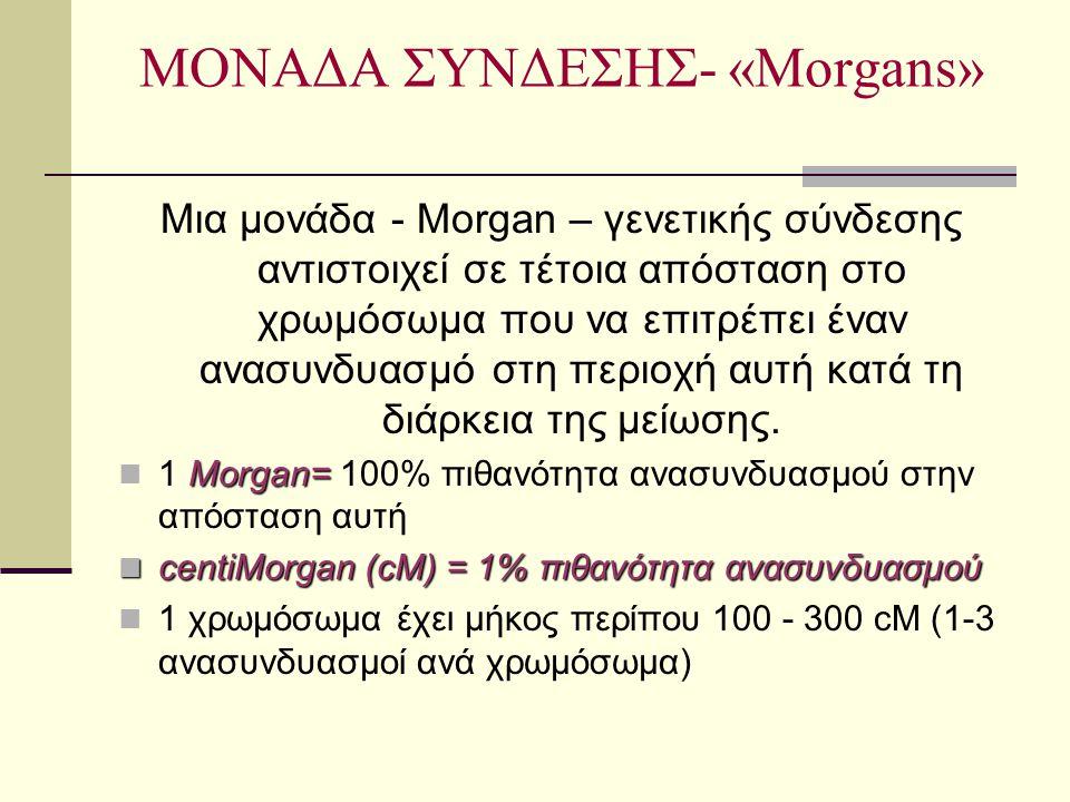 ΜΟΝΑΔΑ ΣΥΝΔΕΣΗΣ- «Morgans» Μια μονάδα - Morgan – γενετικής σύνδεσης αντιστοιχεί σε τέτοια απόσταση στο χρωμόσωμα που να επιτρέπει έναν ανασυνδυασμό στ