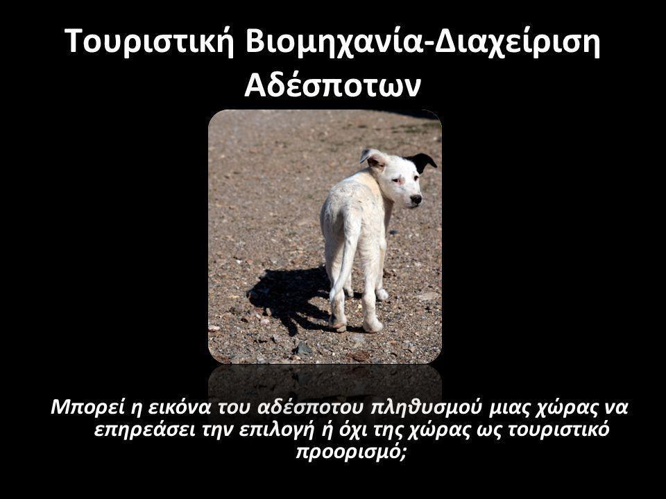 Tουριστική Βιομηχανία-Διαχείριση Αδέσποτων «Παντού υπάρχουν αδέσποτοι σκύλοι.