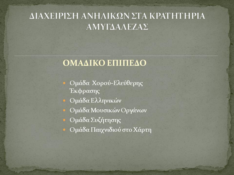 ΟΜΑΔΙΚΟ ΕΠΙΠΕΔΟ  Ομάδα Χορού-Ελεύθερης Έκφρασης  Ομάδα Ελληνικών  Ομάδα Μουσικών Οργάνων  Ομάδα Συζήτησης  Ομάδα Παιχνιδιού στο Χάρτη