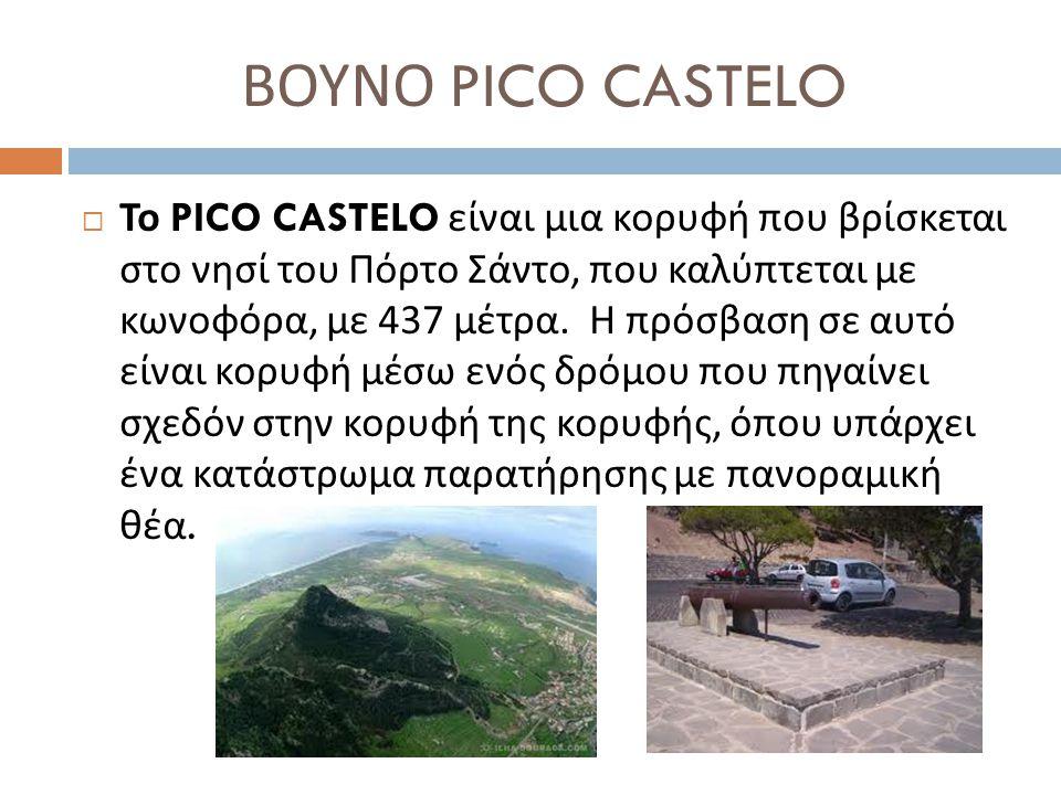 ΒΟΥΝΟ PICO CASTELO  Το PICO CASTELO είναι μια κορυφή που βρίσκεται στο νησί του Πόρτο Σάντο, που καλύπτεται με κωνοφόρα, με 437 μέτρα. Η πρόσβαση σε