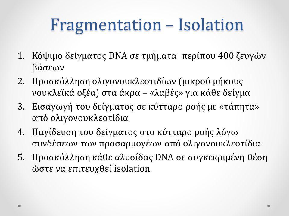 Fragmentation – Isolation 1.Κόψιμο δείγματος DNA σε τμήματα περίπου 400 ζευγών βάσεων 2.Προσκόλληση ολιγονουκλεοτιδίων (μικρού μήκους νουκλεϊκά οξέα) στα άκρα – «λαβές» για κάθε δείγμα 3.Εισαγωγή του δείγματος σε κύτταρο ροής με «τάπητα» από ολιγονουκλεοτίδια 4.Παγίδευση του δείγματος στο κύτταρο ροής λόγω συνδέσεων των προσαρμογέων από ολιγονουκλεοτίδια 5.Προσκόλληση κάθε αλυσίδας DNA σε συγκεκριμένη θέση ώστε να επιτευχθεί isolation