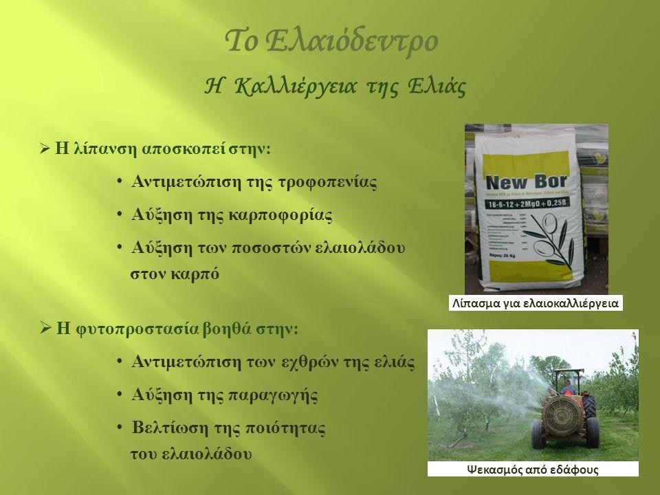  Η λίπανση αποσκοπεί στην: • Αντιμετώπιση της τροφοπενίας • Αύξηση της καρποφορίας • Αύξηση των ποσοστών ελαιολάδου στον καρπό  Η φυτοπροστασία βοηθ