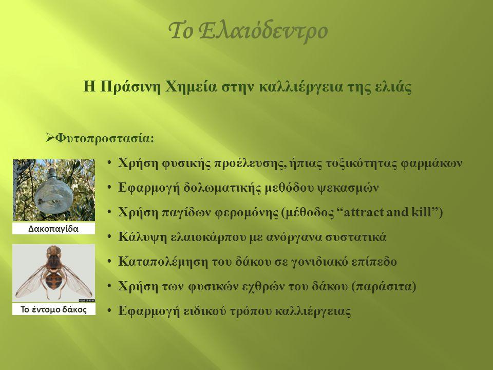 Η Πράσινη Χημεία στην καλλιέργεια της ελιάς  Φυτοπροστασία: • Χρήση φυσικής προέλευσης, ήπιας τοξικότητας φαρμάκων • Εφαρμογή δολωματικής μεθόδου ψεκ