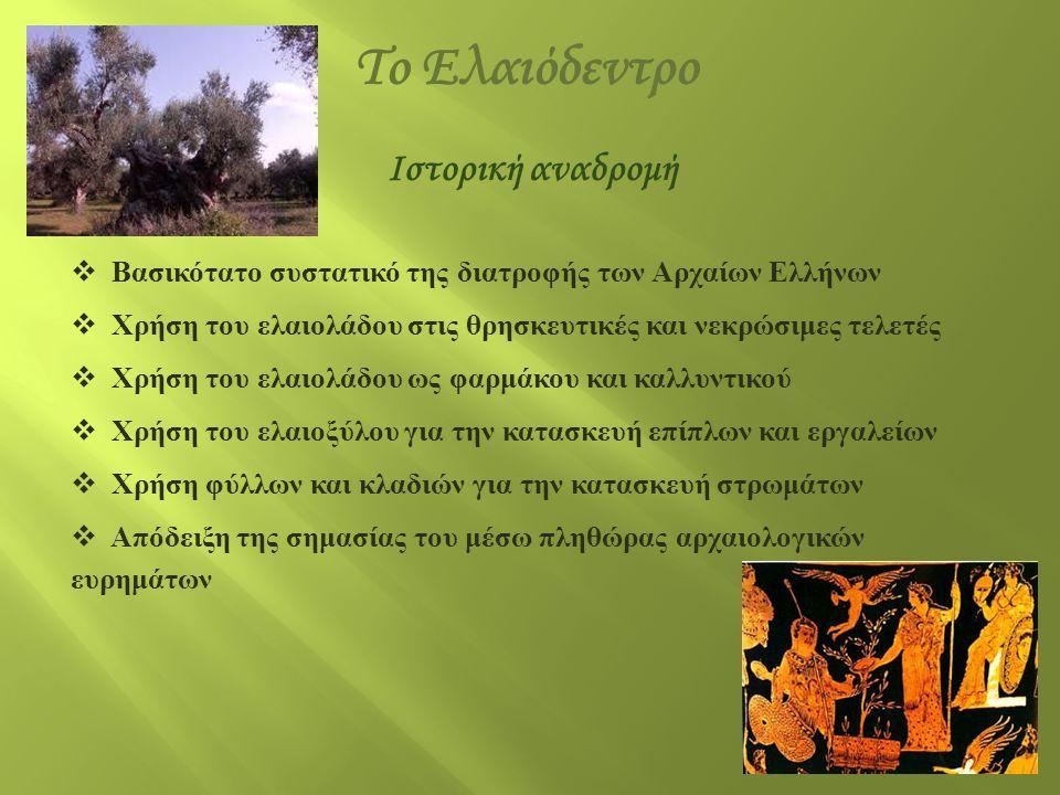 Ιστορική αναδρομή  Βασικότατο συστατικό της διατροφής των Αρχαίων Ελλήνων  Χρήση του ελαιολάδου στις θρησκευτικές και νεκρώσιμες τελετές  Χρήση του