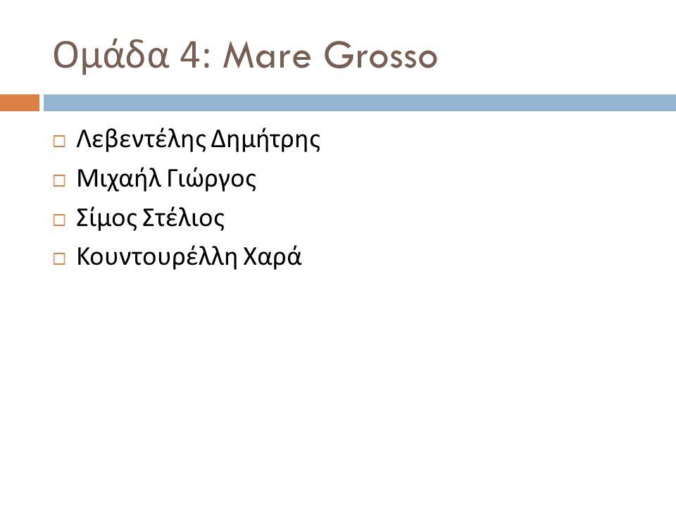 Ομάδα 4: Mare Grosso  Λεβεντέλης Δημήτρης  Μιχαήλ Γιώργος  Σίμος Στέλιος  Κουντουρέλλη Χαρά