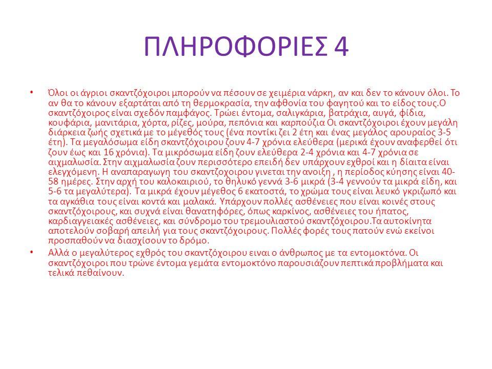 ΦΩΤΟΓΡΑΦΙΕΣ 2